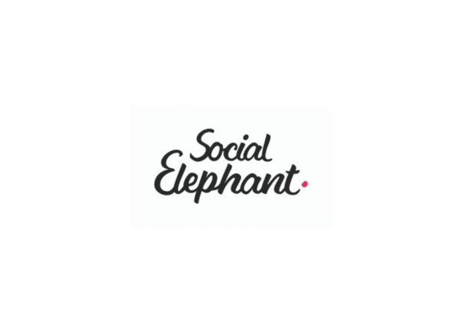 Social Elephant